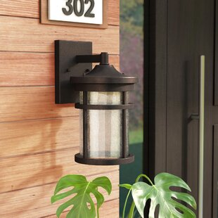 Latitude Run Kasey Outdoor Wall Lantern