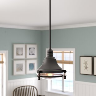 Breakwater Bay Aquila 1-Light Cone Pendant