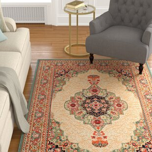 Alexandria Oriental Indoor/Outdoor Area Rug