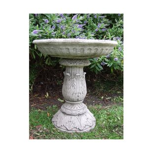 Rockledge Bird Bath By Sol 72 Outdoor