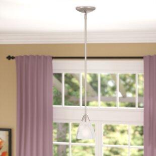 Andover Mills Sheldrake 1-Light Cone Pendant
