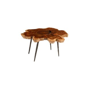 Makha Burled Wood Coffee Table by Phillips Collection