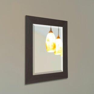 Latitude Run Black Walnut Wall Mirror
