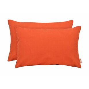 Indoor/Outdoor Lumbar Pillows (Set of 2)