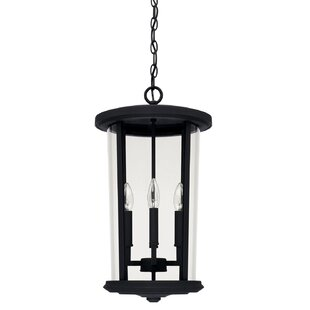 Alcott Hill Brutus 4-Light Outdoor Hanging Lantern