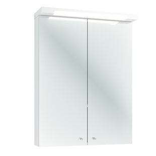 Prescott 60 X 80cm Surface Mount Flat Mirror Cabinet With Lighting By Ebern Designs