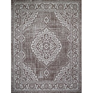 Krantz Dark Brown Indoor/Outdoor Area Rug