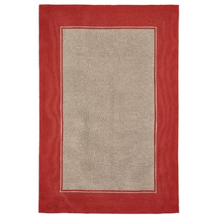 Elam Border Hand-Woven Orange/Beige Indoor/Outdoor Area Rug