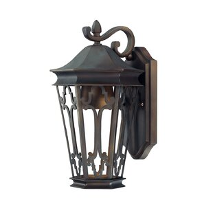 Christa 1-Light Outdoor Wall Lantern by A..