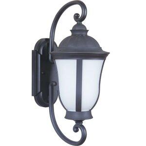Olsson Traditional 1-Light Outdoor Wall Lantern