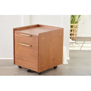 Moffitt 2-Drawer Mobile Vertical Filing Cabinet by Brayden Studio Herry Up