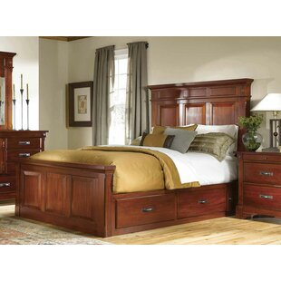 Darby Home Co Barter Storage Panel Bed