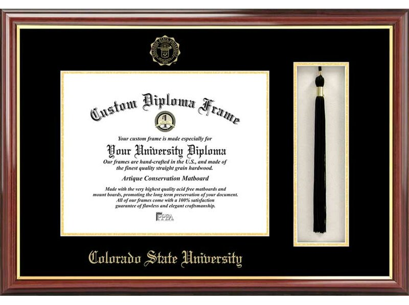 Campus Images NCAA Tassel Box and Diploma Picture Frame & Reviews ...