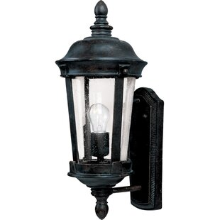Arsenault 1-Light Outdoor Sconce