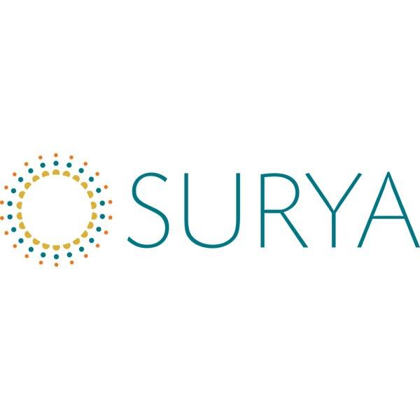 Surya   Wayfair