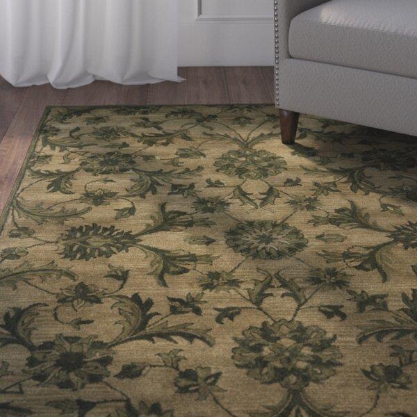 charlton home dunbar olive/green area rug & reviews | wayfair.ca