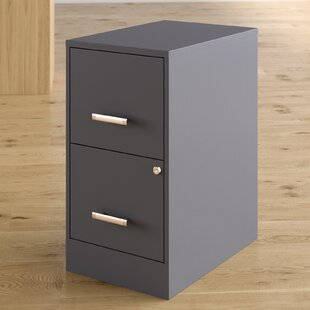 Wrought Studio Wooster 2 Drawer Vertical Filing Cabinet