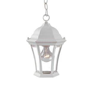 Alcott Hill Francesca Lane 1-Light Outdoor Hanging Lantern