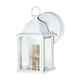 Haelly 1-Light Outdoor Wall Lantern By Winston Porter