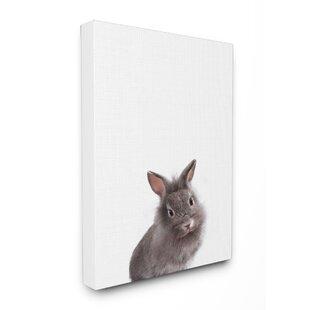 Baby Bunny Studio Photo Canvas Art