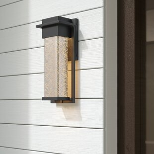 Luzerne Outdoor Sconce by Brayden Studio