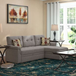 Comparison Platte Reversible Sleeper Sectional by Winston Porter Reviews (2019) & Buyer's Guide