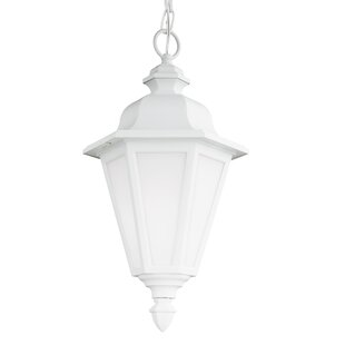 Darby Home Co Palmdale Traditional 1-Light Outdoor Pendant
