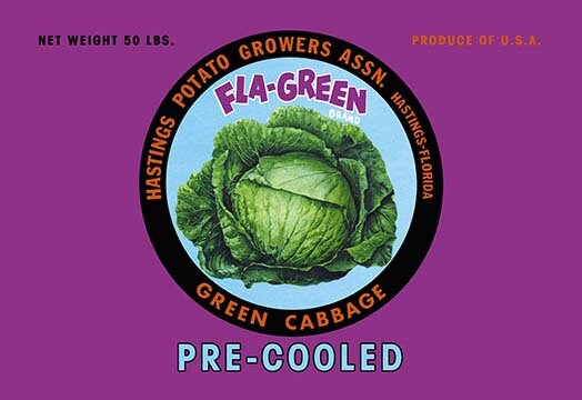 Buyenlarge Fla Green Green Cabbage Vintage Advertisement Wayfair