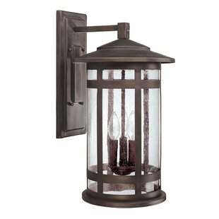 Affordable Luiz Outdoor Wall Lantern in Burnished Bronze By Gracie Oaks