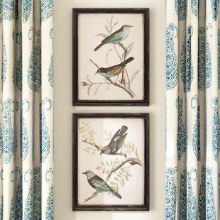 Wall art birch lane maisly bird 2 piece framed graphic art print set on wood in bluebrown malvernweather Choice Image