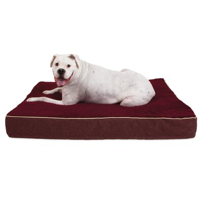 "Orthopedic Dog Mat Pillow Aspen Pet Size: 36"" W X 27"" D X 3.5"" H, Color: Burgundy"