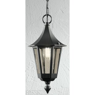 Tourelle 1 Light Outdoor Hanging Lantern By Marlow Home Co.