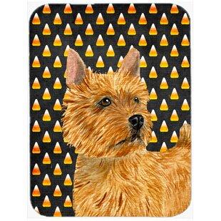 Halloween Candy Corn Norwich Terrier Portrait Glass Cutting Board