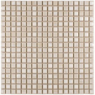Review Arcadia 0.56 x 0.56 Porcelain Mosaic Tile in Glacier by EliteTile