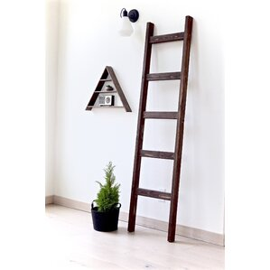 Nice Shop 46 Decorative Ladders | Wayfair