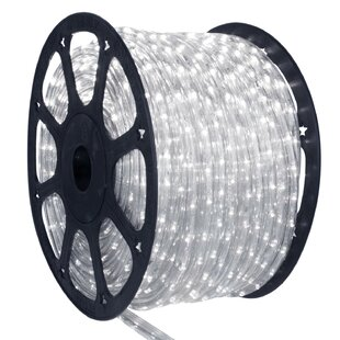 Northlight Seasonal LED Indoor/Outdoor Christmas Rope Lights on a Spool