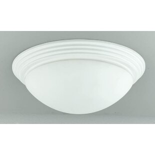 Red Barrel Studio Ledyard 2-Light Flush Mount