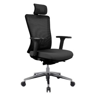 Youmans Professional Ergonomic Mesh Task Chair