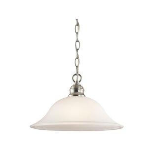 Hertzler 1-Light Cone Pend..