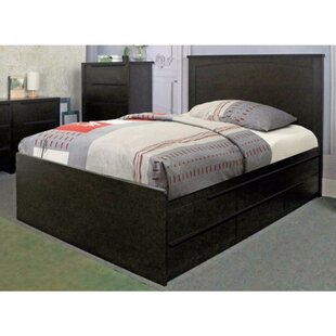Drinnon Deluxe Storage Platform Bed