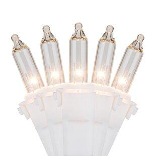 Wintergreen Lighting 100 Mini Lights 6