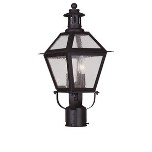 Darby Home Co Outdoor 2-Light Lantern Head