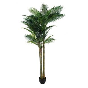 Artificial Palm Tree In Pot By The Seasonal Aisle