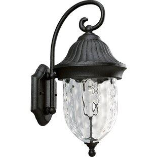 Alcott Hill Triplehorn 1-Light Outdoor Hammered Wall lantern
