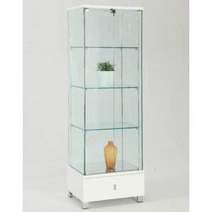 Khadim Lighted Curio Cabinet by Orren Ellis