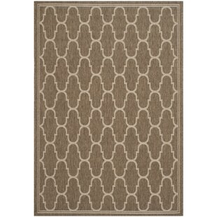 Altona Brown/Beige Indoor/Outdoor Area Rug
