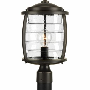 Read Reviews Celestine 1-Light Lantern Head By Loon Peak