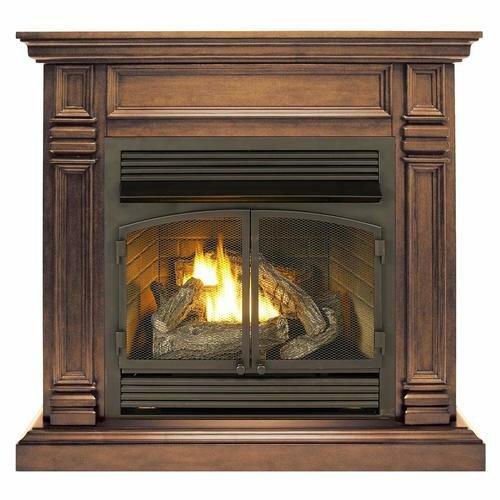 Darby Home Co Fonda Vent Free Freestanding Natural Gas Propane