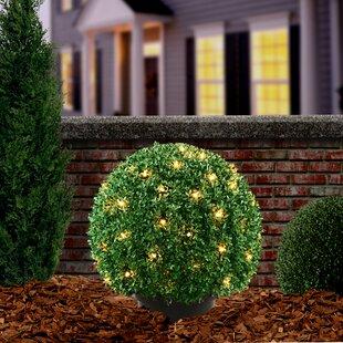 Pre-Lit Mini Boxwood Ball Topiary in Pot