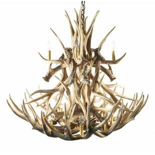Millwood Pines Delphine Mule/Deer 12-Light Novelty Chandelier